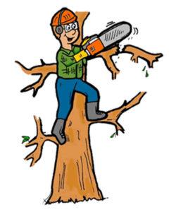 tree shear hire no chainsaw